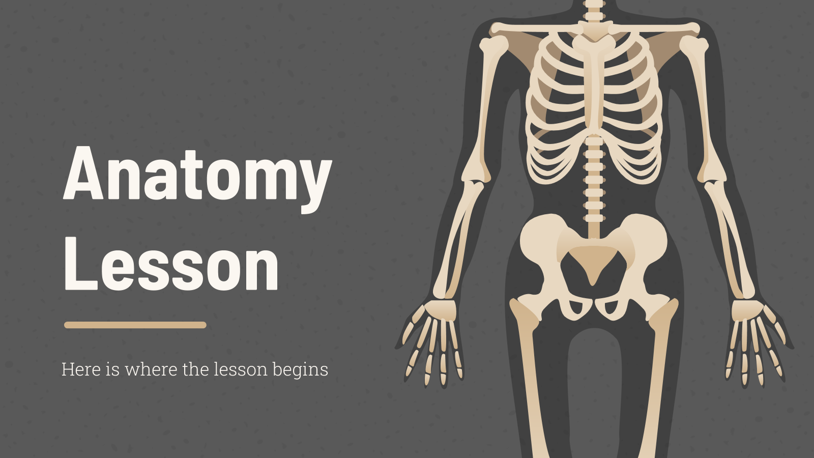 Anatomy Lesson presentation template