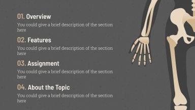 Modelo de apresentação Aula de anatomia