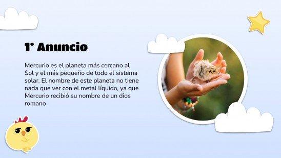 Cute Chicks Newsletter presentation template