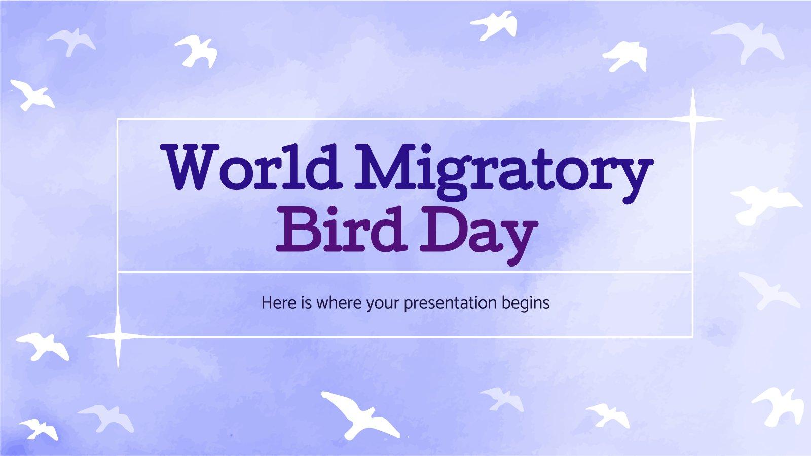 Journée mondiale des oiseaux migrateurs : Modèles de présentation