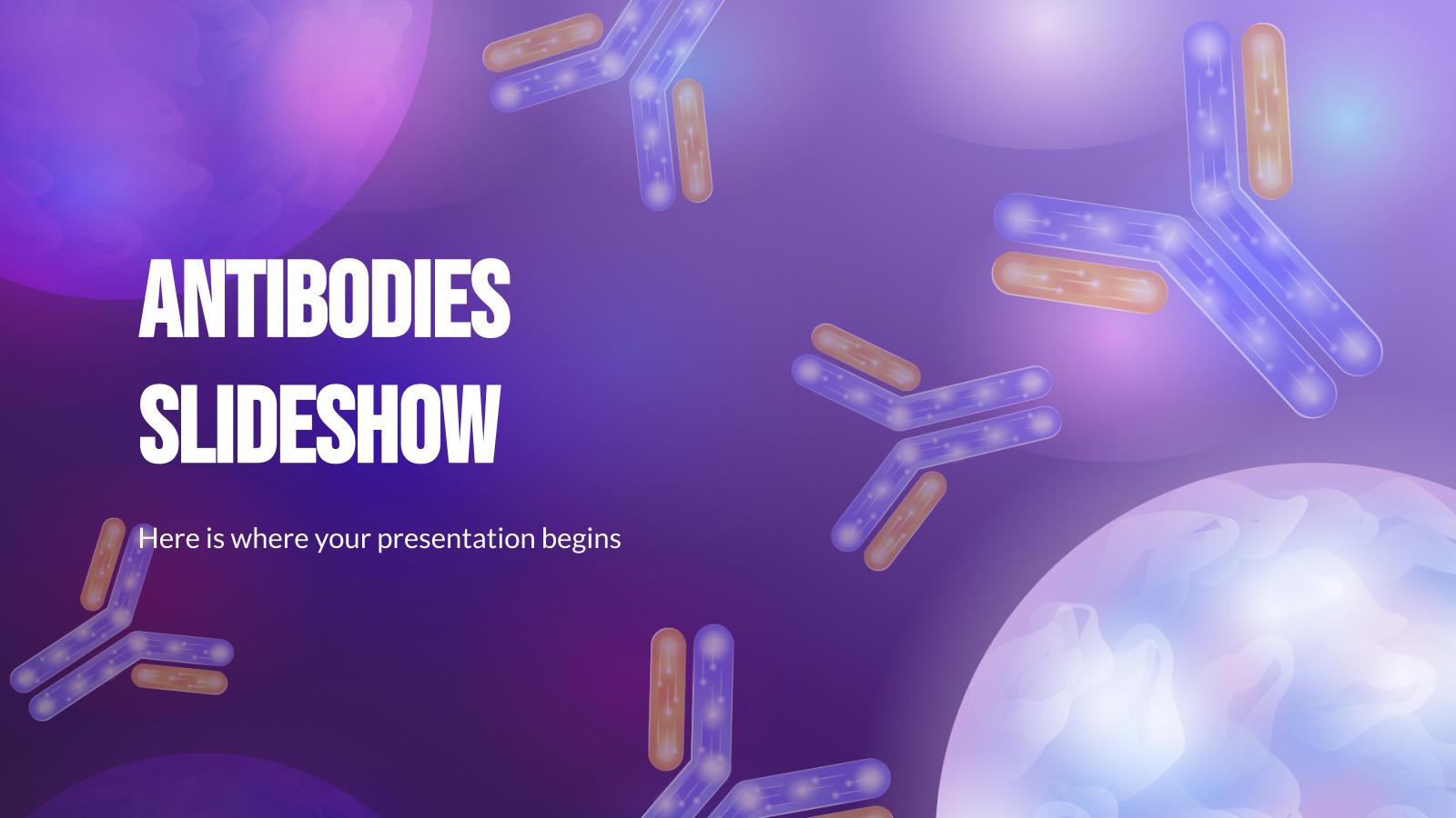Diaporama sur les anticorps : Modèles de présentation