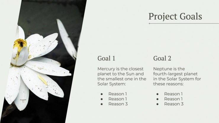 Eco Project Proposal presentation template