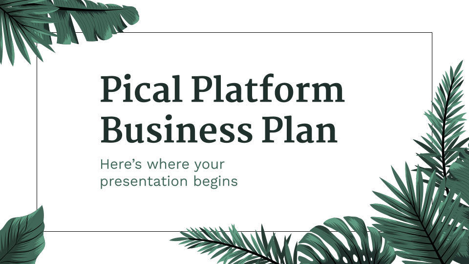 Pical Platform Business Plan presentation template