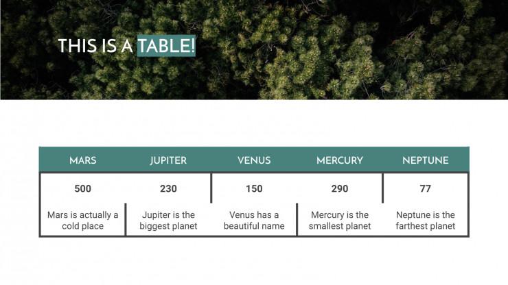 Digital Nomad presentation template