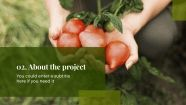 Sustainable Agriculture Project Proposal presentation template