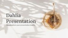 Dahlia : Modèles de présentation