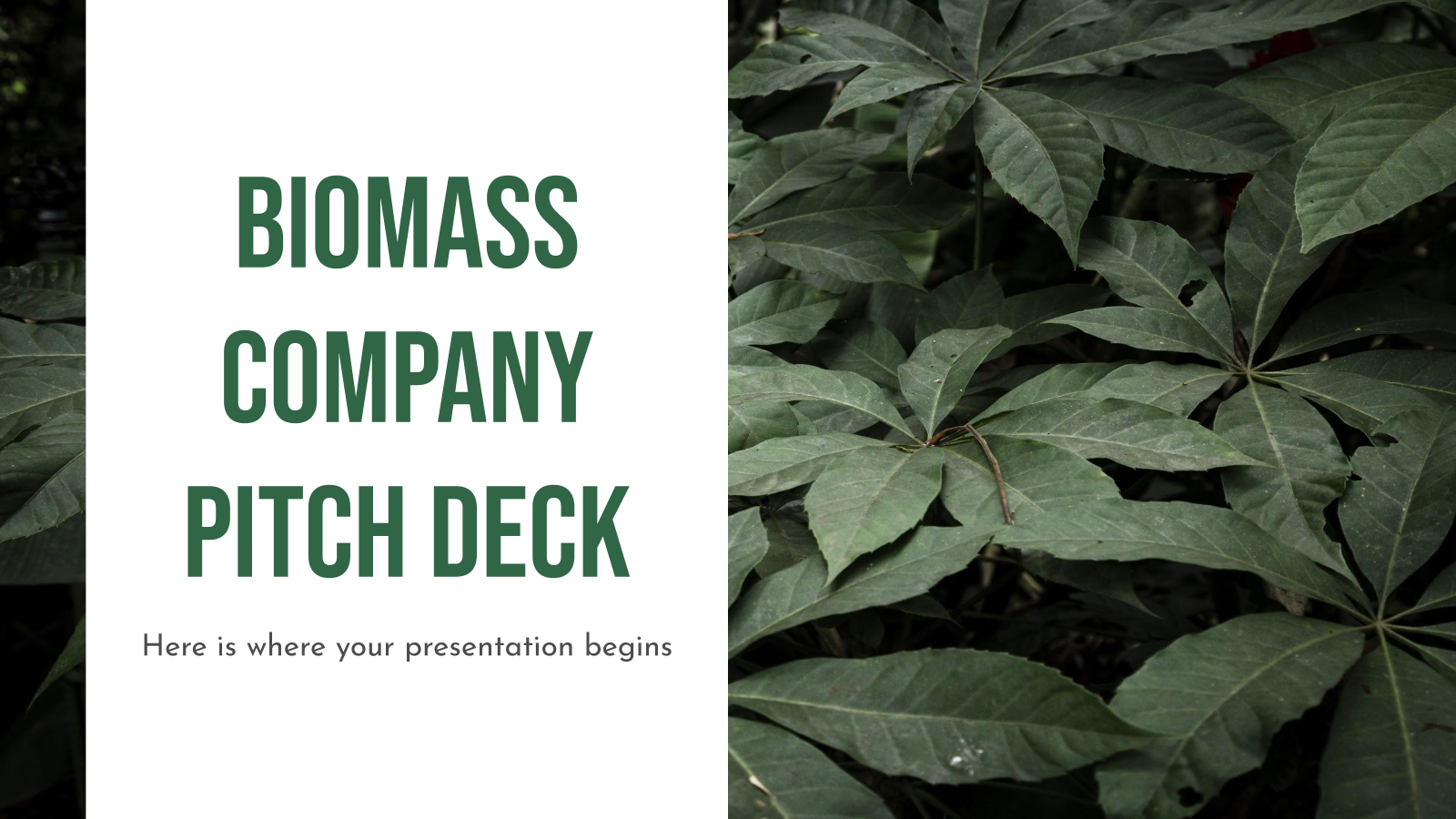 Biomass Company Pitch Deck presentation template