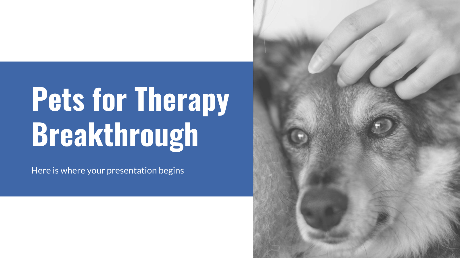 Pets for Therapy Breakthrough presentation template