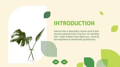 Cours de sciences naturelles : Modèles de présentation