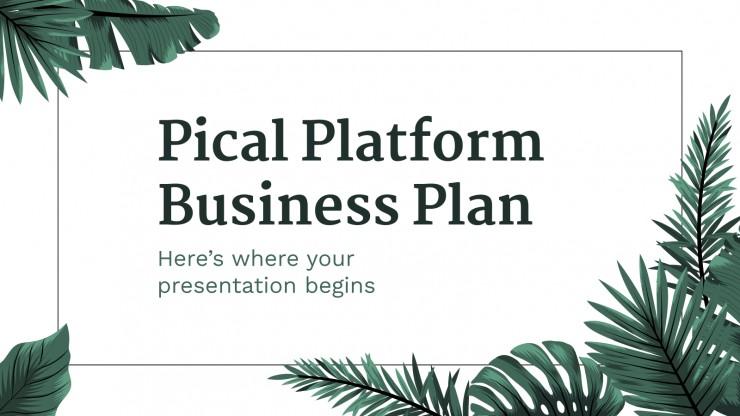 Pical Platform Business Plan presentation template