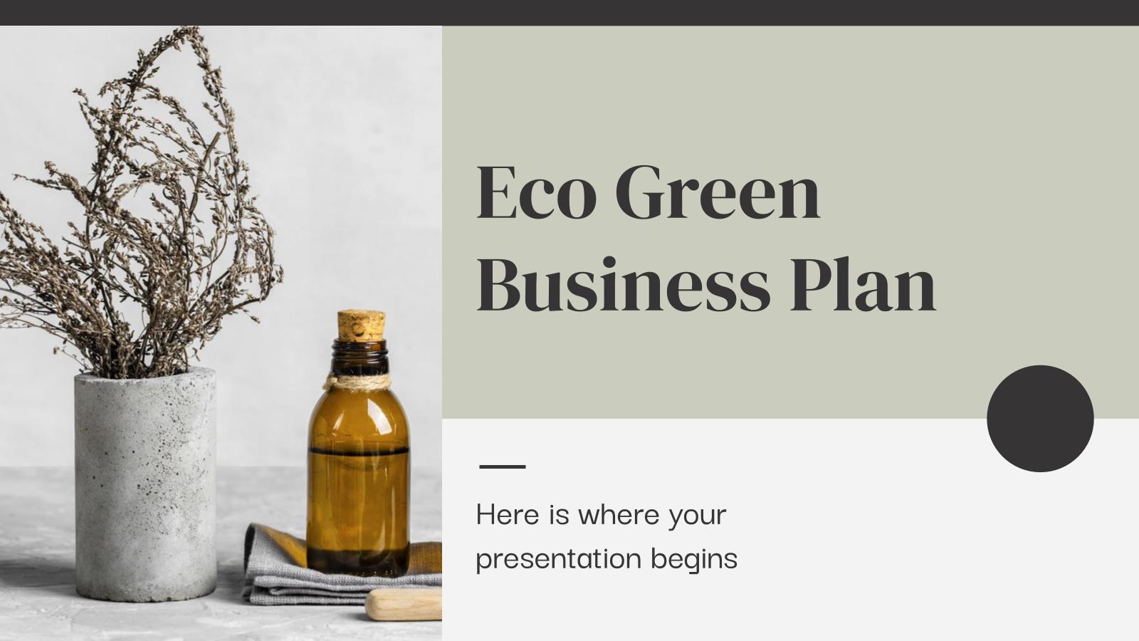 Eco Green Business Plan presentation template