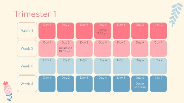 Plantilla de presentación Pregnancy Calendar