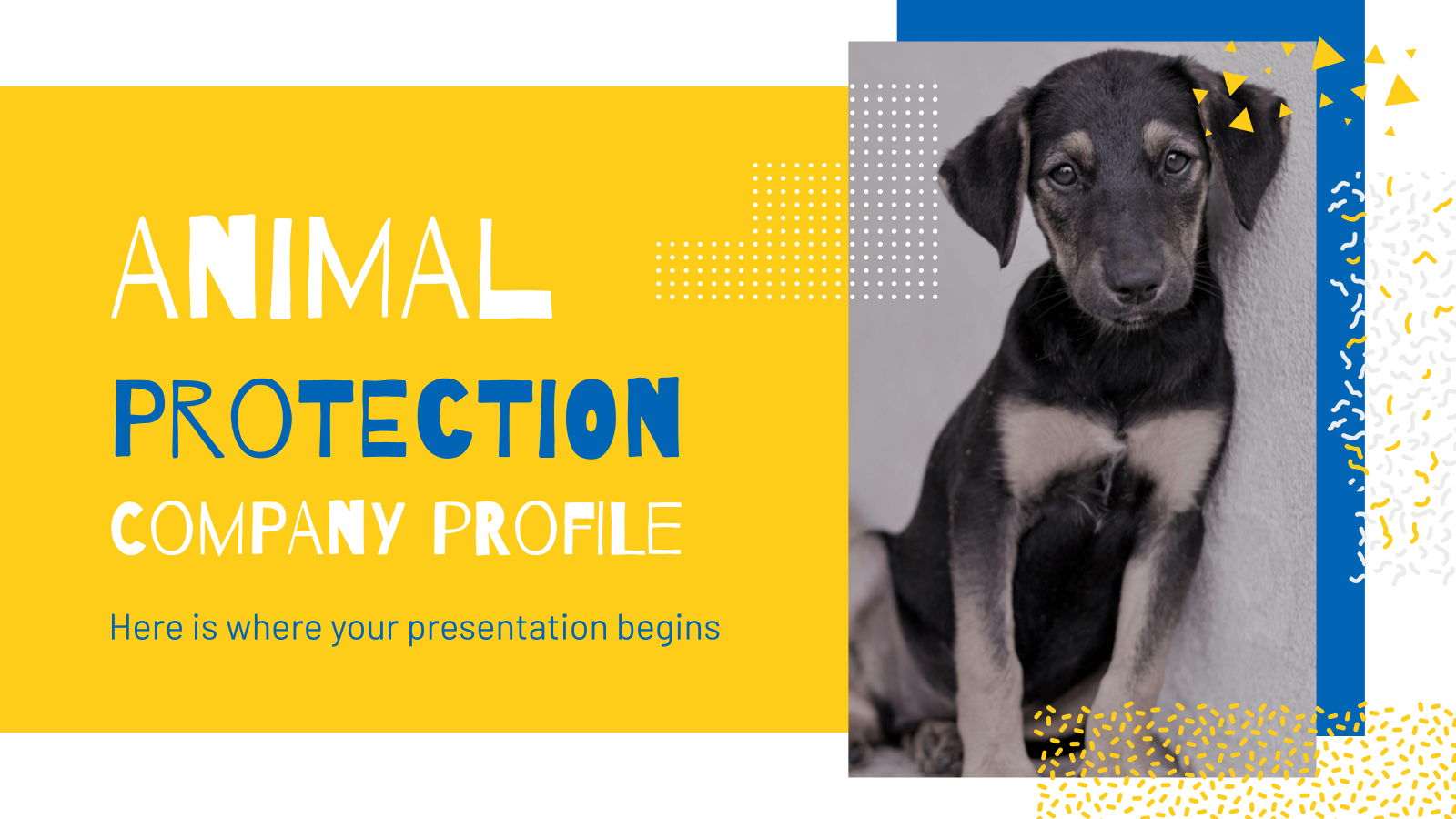 Animal Protection Company Profile presentation template