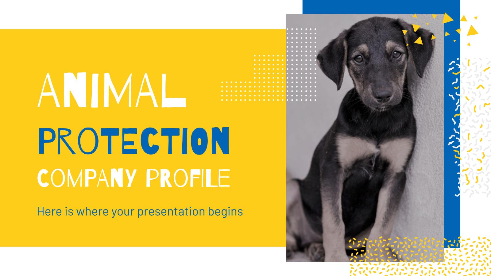 Profil de société protectrice des animaux : Modèles de présentation