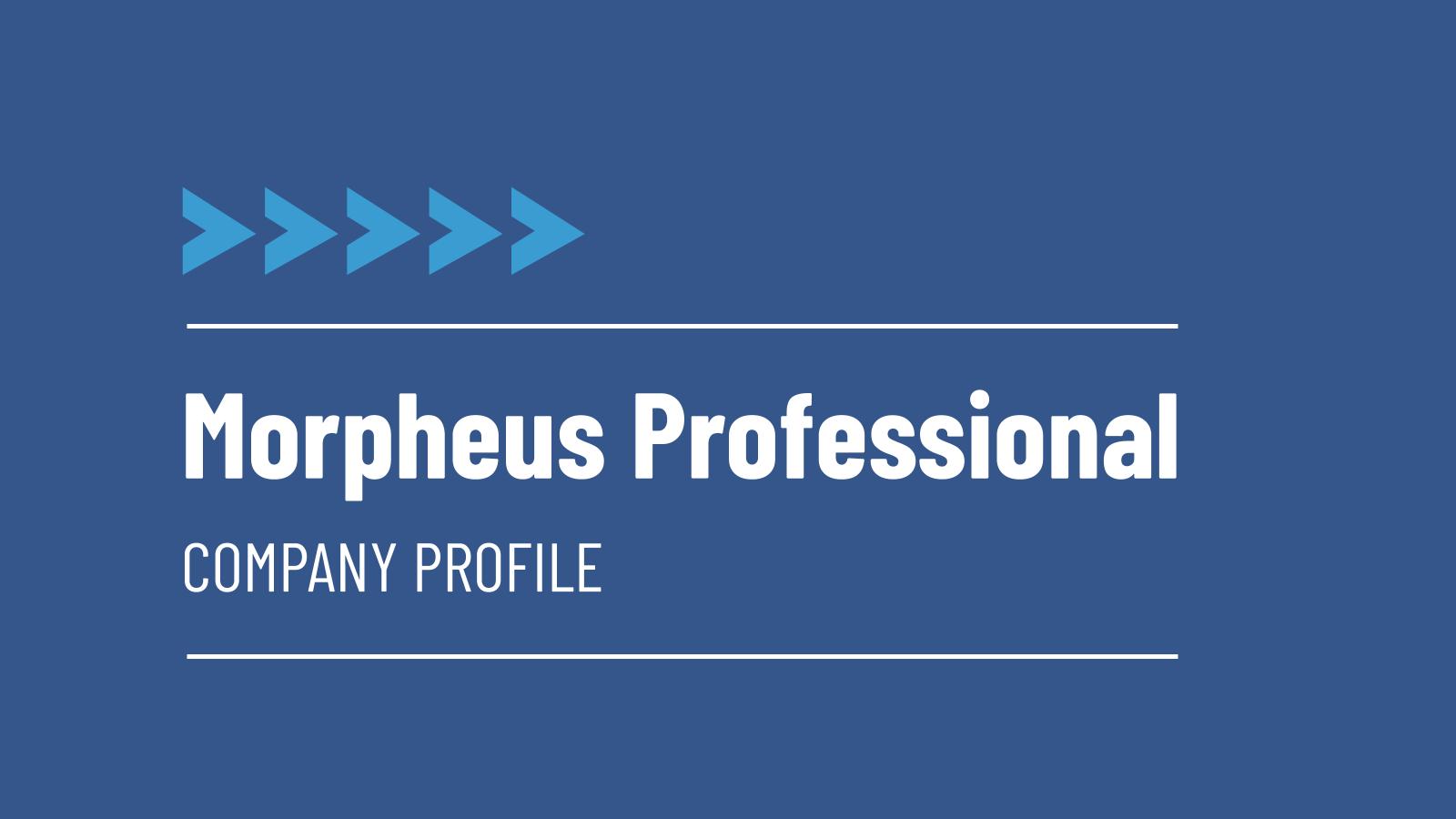 Plantilla de presentación Perfil profesional de empresa Morpheus