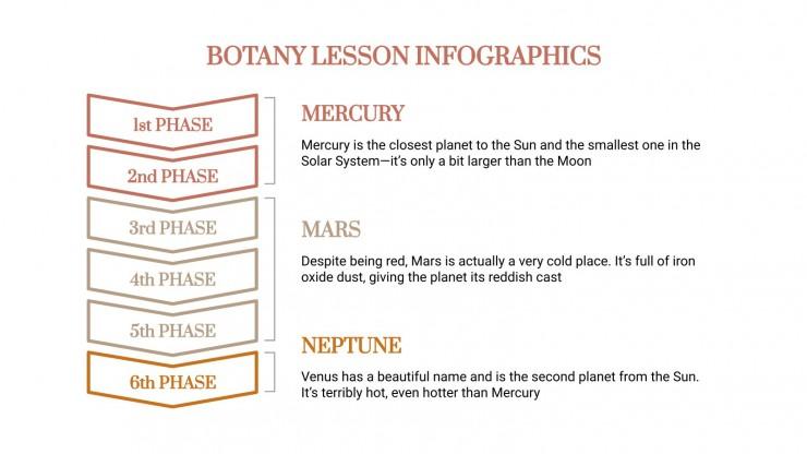 Plantilla de presentación Infografías de clase de botánica