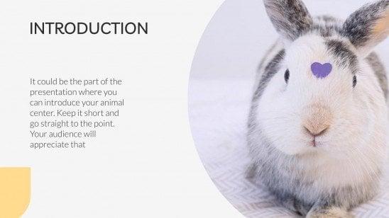 Animal Center presentation template