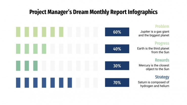 Project Manager's Dream Monthly Report Infographics presentation template