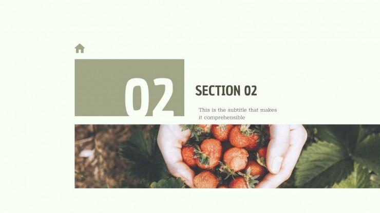 CSR Report presentation template
