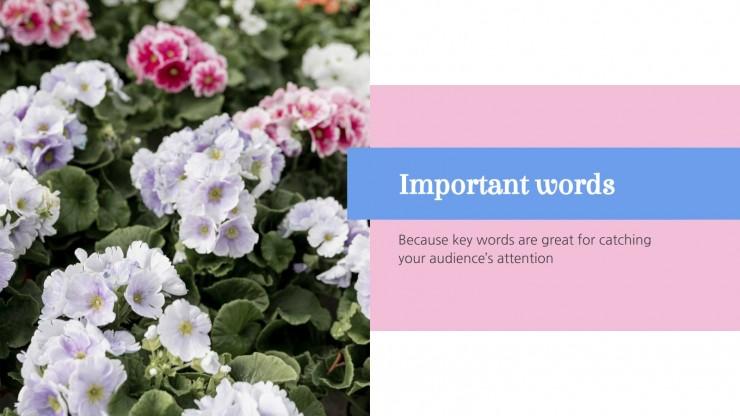Fiesta de los patios: Cordoba presentation template