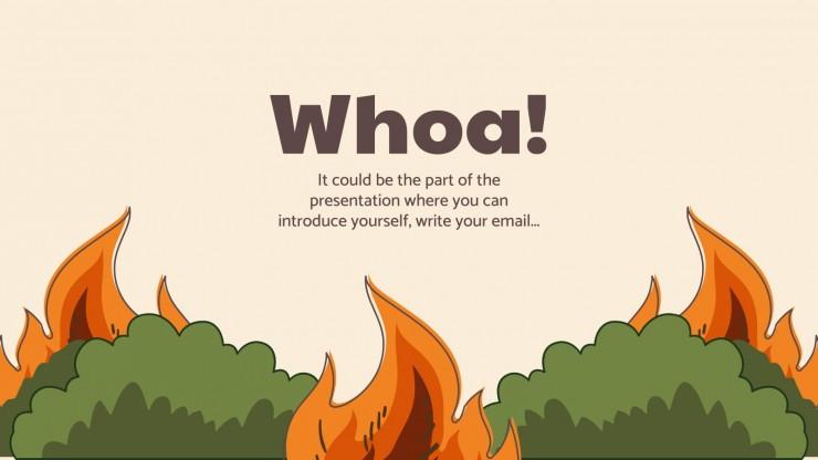 Préparation des communautés aux incendies de forêt : Modèles de présentation