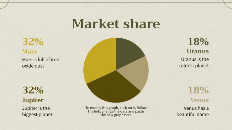 Top Budget Business Plan presentation template