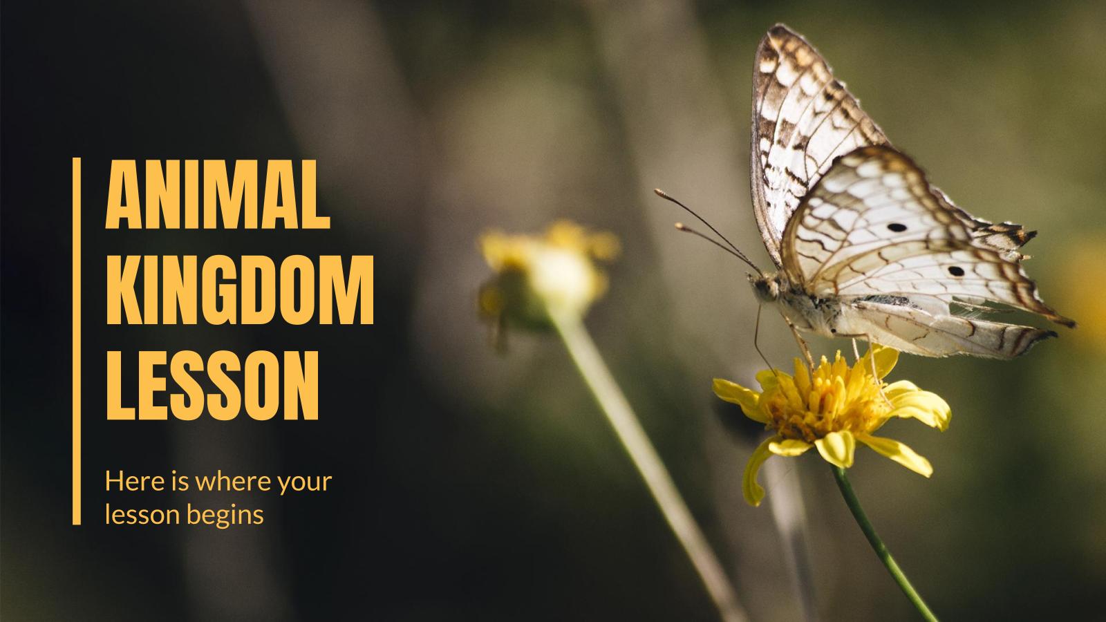 Plantilla de presentación Lección sobre el reino animal