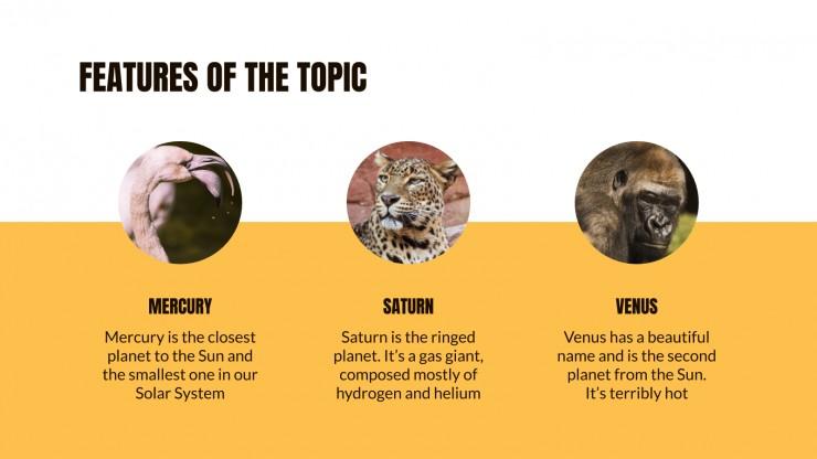 Modelo de apresentação Aula sobre a fauna