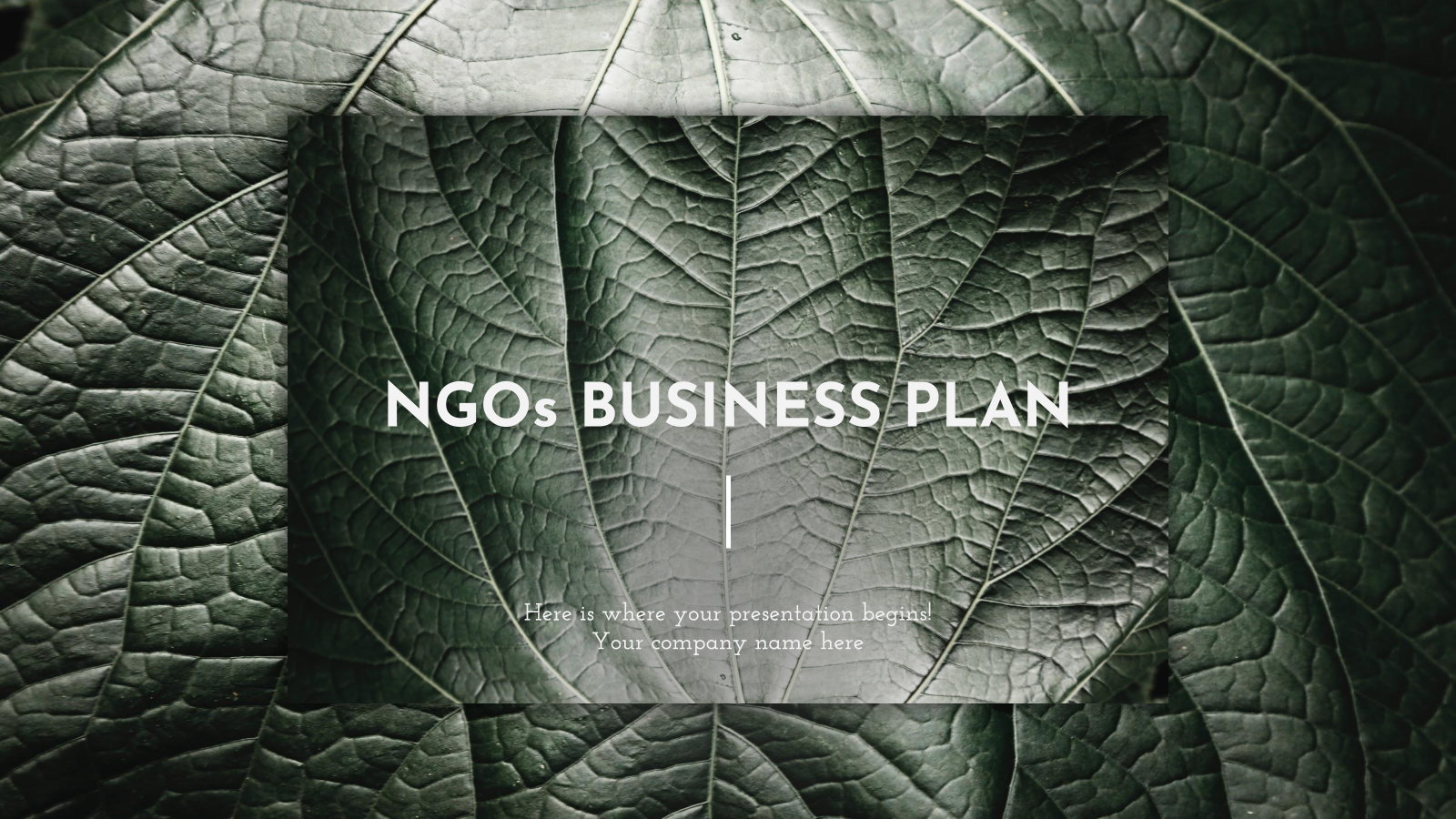 NGOs Business Plan presentation template