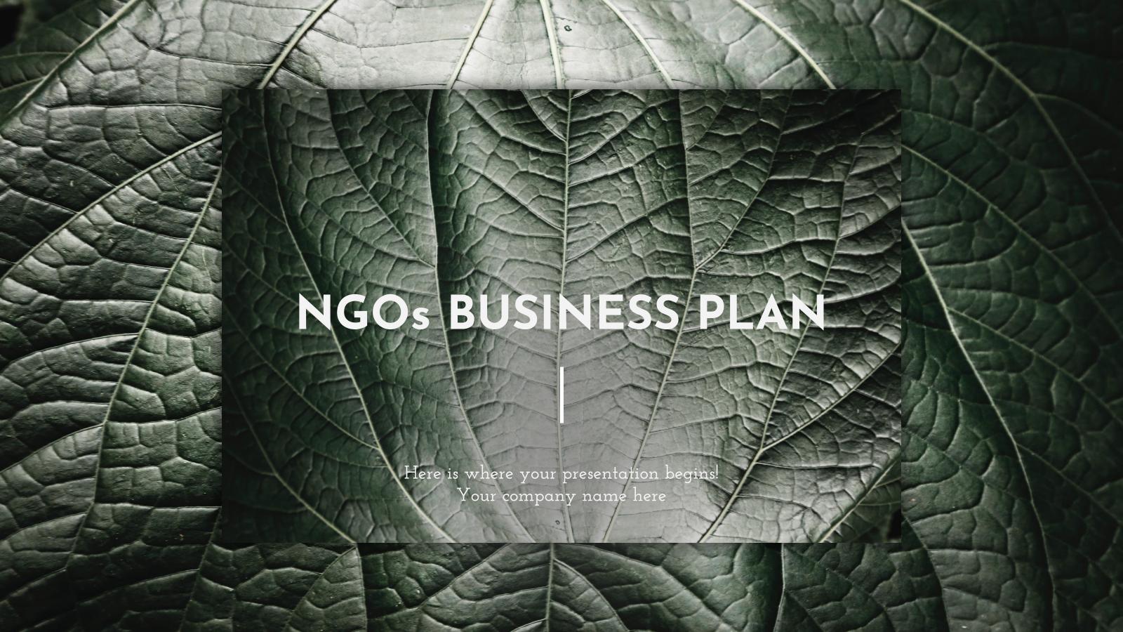 Modelo de apresentação Plano de negócios para ONGs