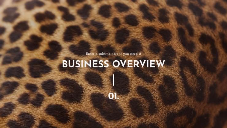 NGOs Business Plan presentation template