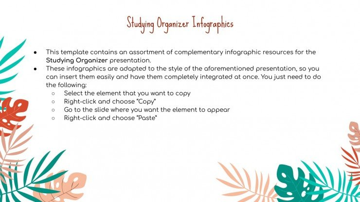 Studying Organizer Infographics presentation template