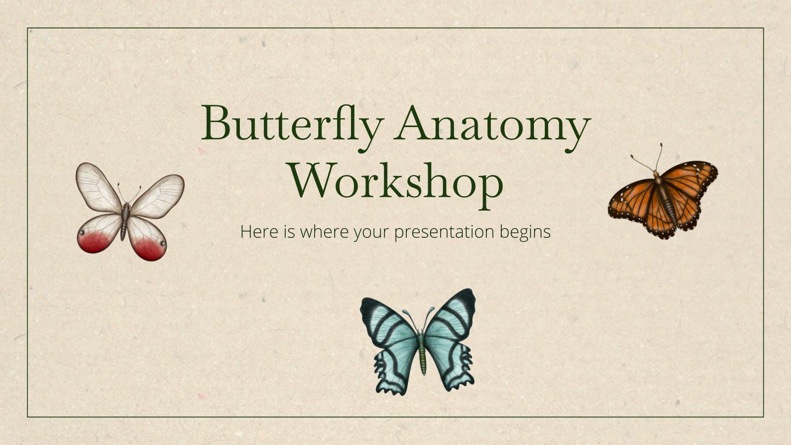 Butterfly Anatomy Workshop presentation template