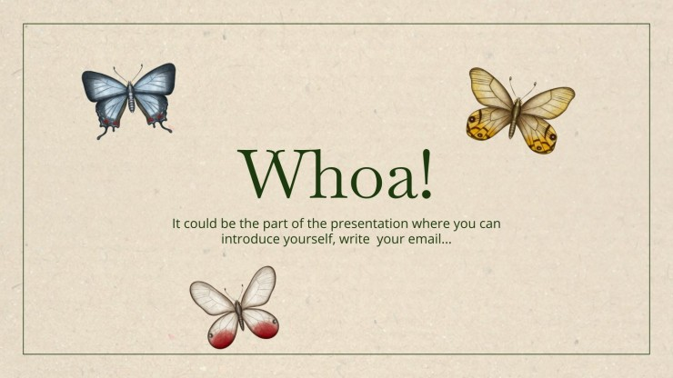 Schmetterling Anatomie-Workshop Präsentationsvorlage