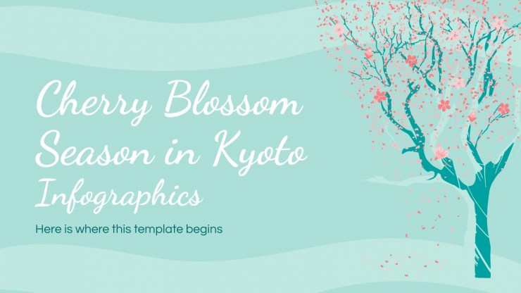 Infografía florecimiento de cerezos en Kioto