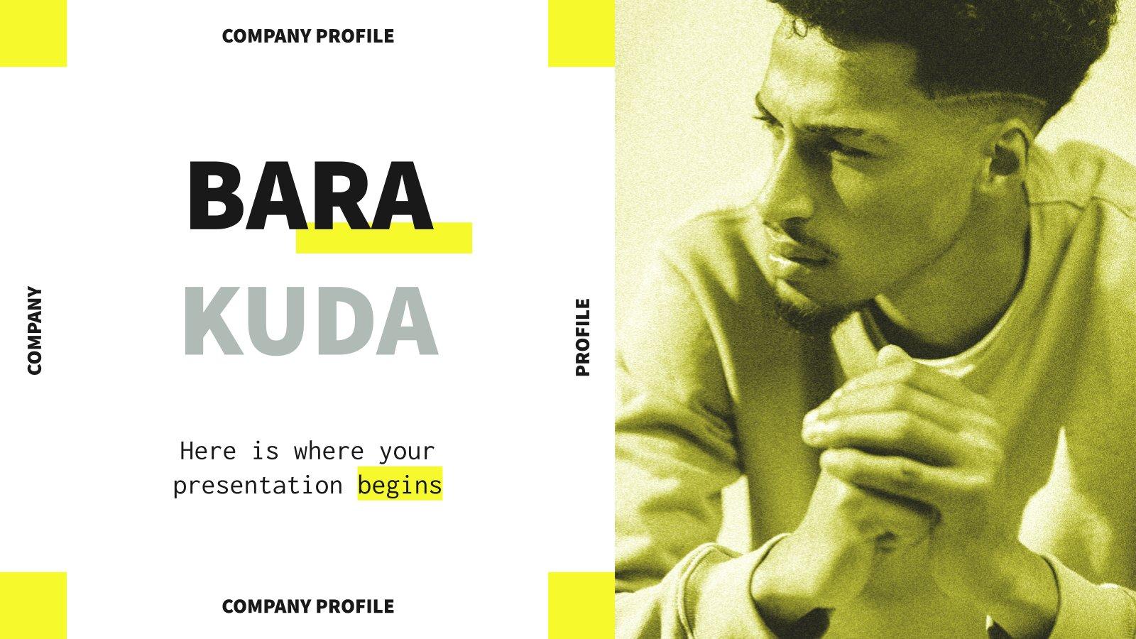 Barakuda Company Profile presentation template