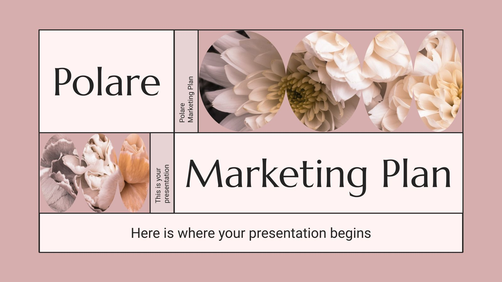 Polare Marketingplan Präsentationsvorlage