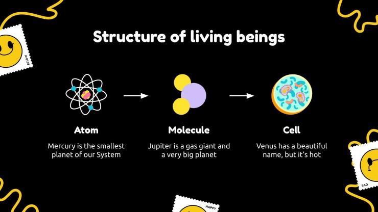 Modelo de apresentação Ciência para o ensino médio: Ciências da vida