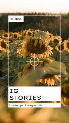 IG Stories mit Landschaftshintergründen Präsentationsvorlage