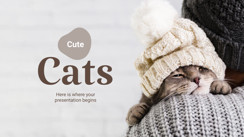 Cute Cats presentation template