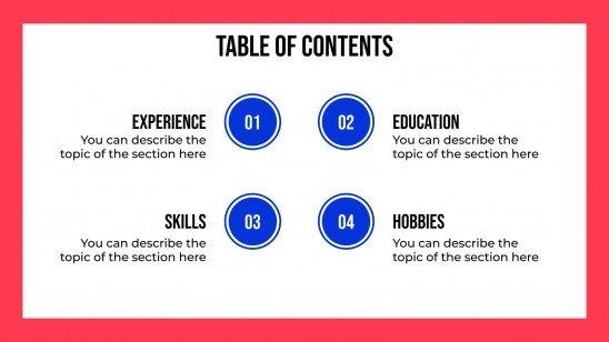 Professional Curriculum Vitae presentation template