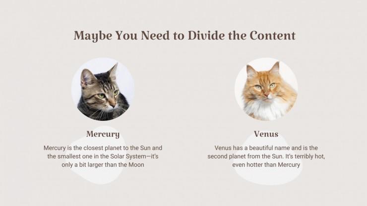 Cute Cats presentation template