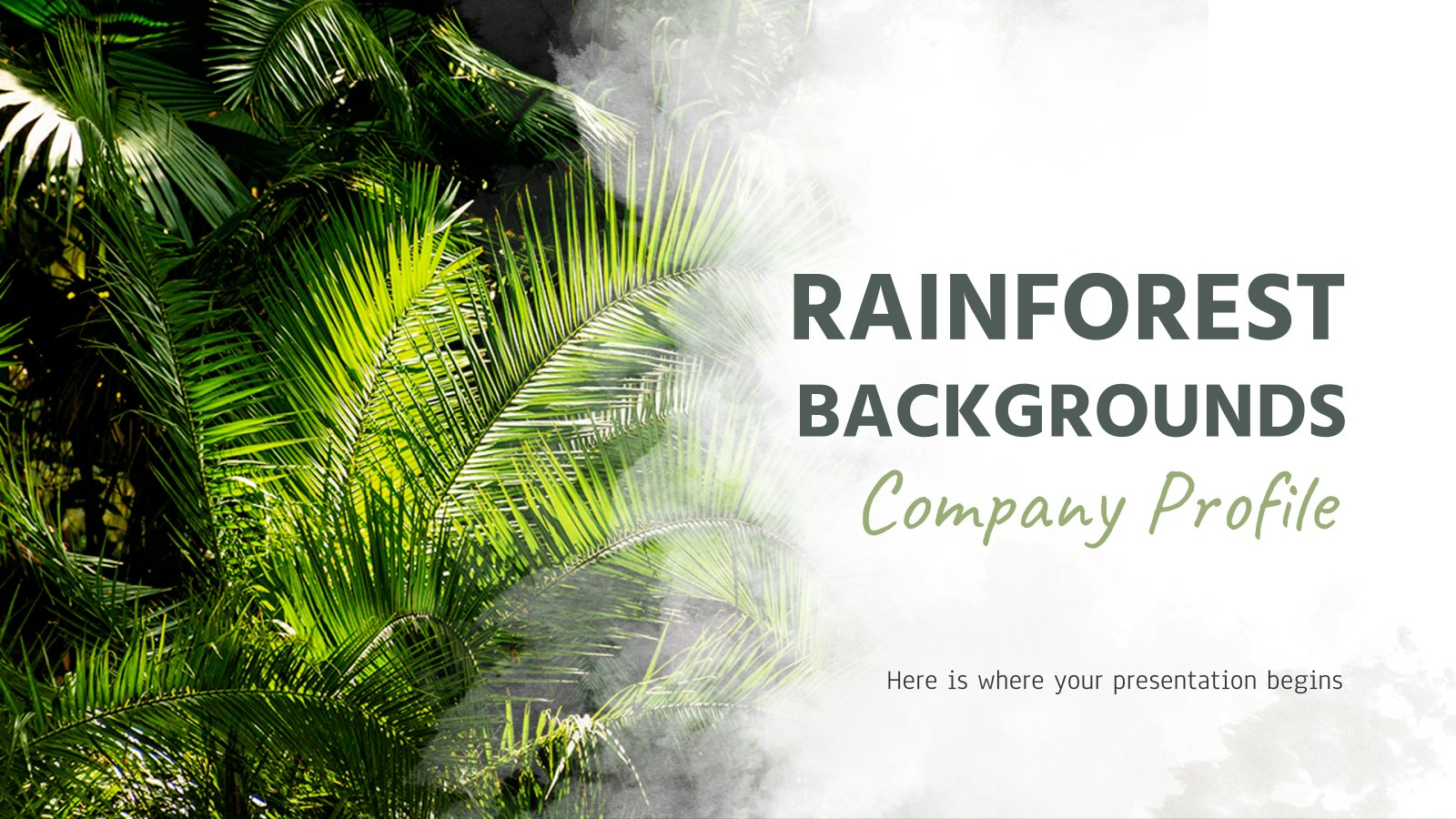 Rainforest Backgrounds Company Profile presentation template