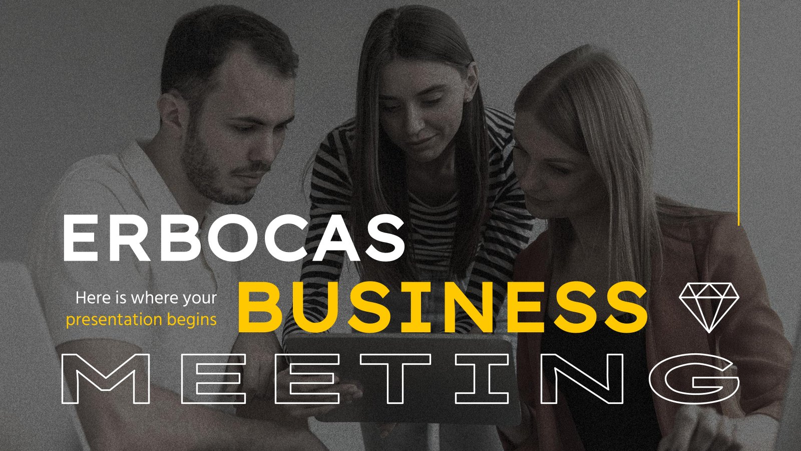 Erbocas Business Meeting presentation template