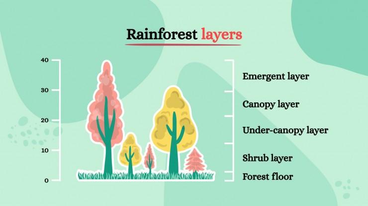Plantilla de presentación Enciclopedia sobre la flora del bosque tropical