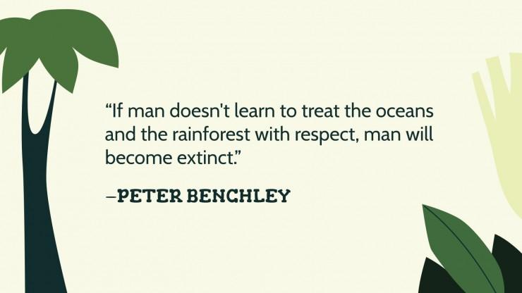 Die Regenwälder der Welt Präsentationsvorlage