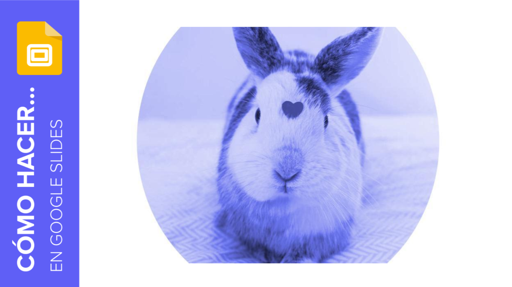 Cómo aplicar filtros a tus fotografías en Google Slides | Tutoriales y Tips para tus presentaciones