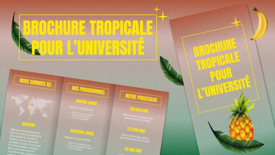 Tropical brochure for college presentation template