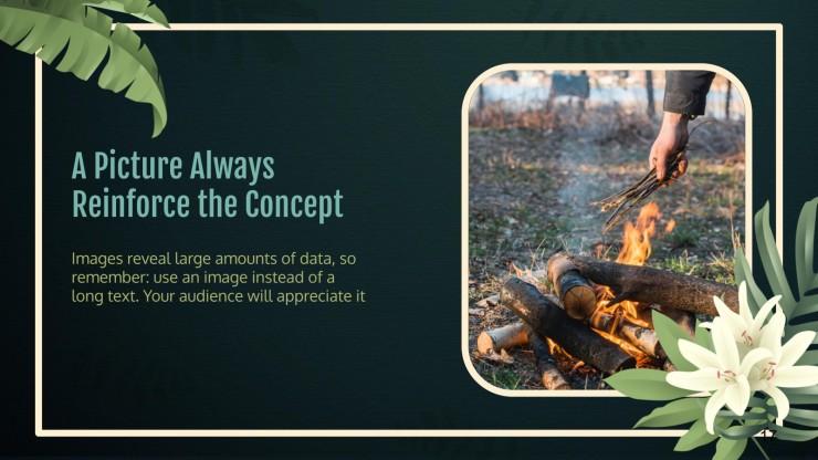 Bewusstsein für die Abholzung des Amazonas Regenwaldes Präsentationsvorlage